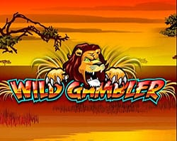 Wild Gambler Slot Machine
