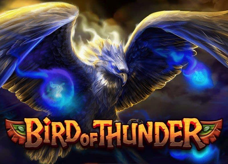 Bird of Thunder Habanero